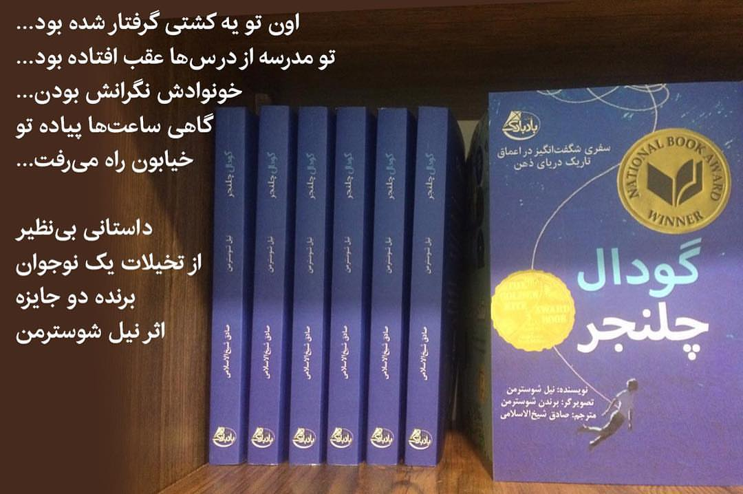 چند جلد از کتاب گودال چلنجر